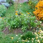 Přírodní zahrada Hauserová Eva