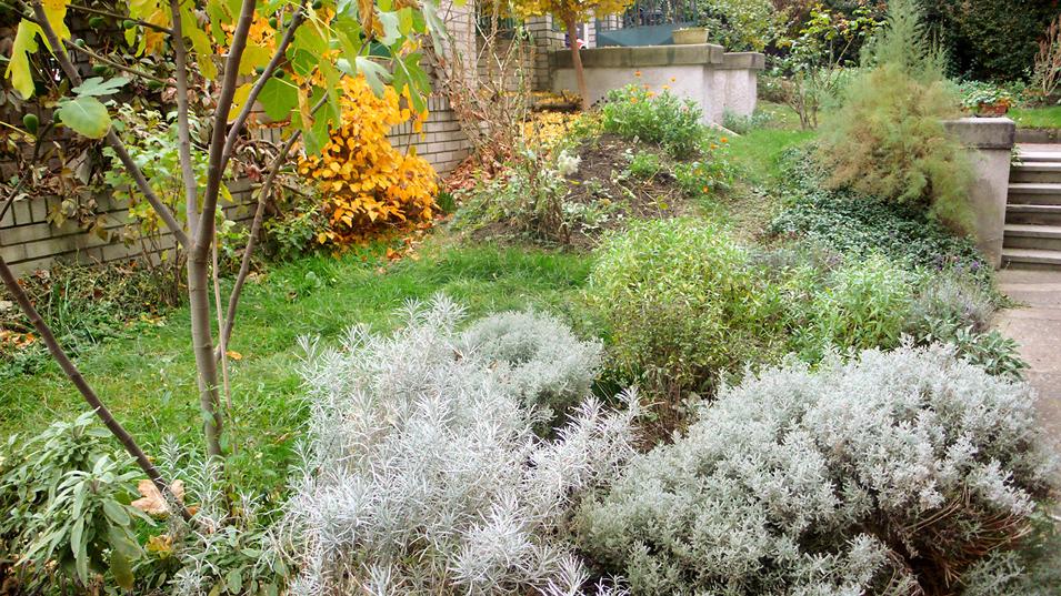 Bylinkový záhon | přírodní zahrada Evy Hauserové